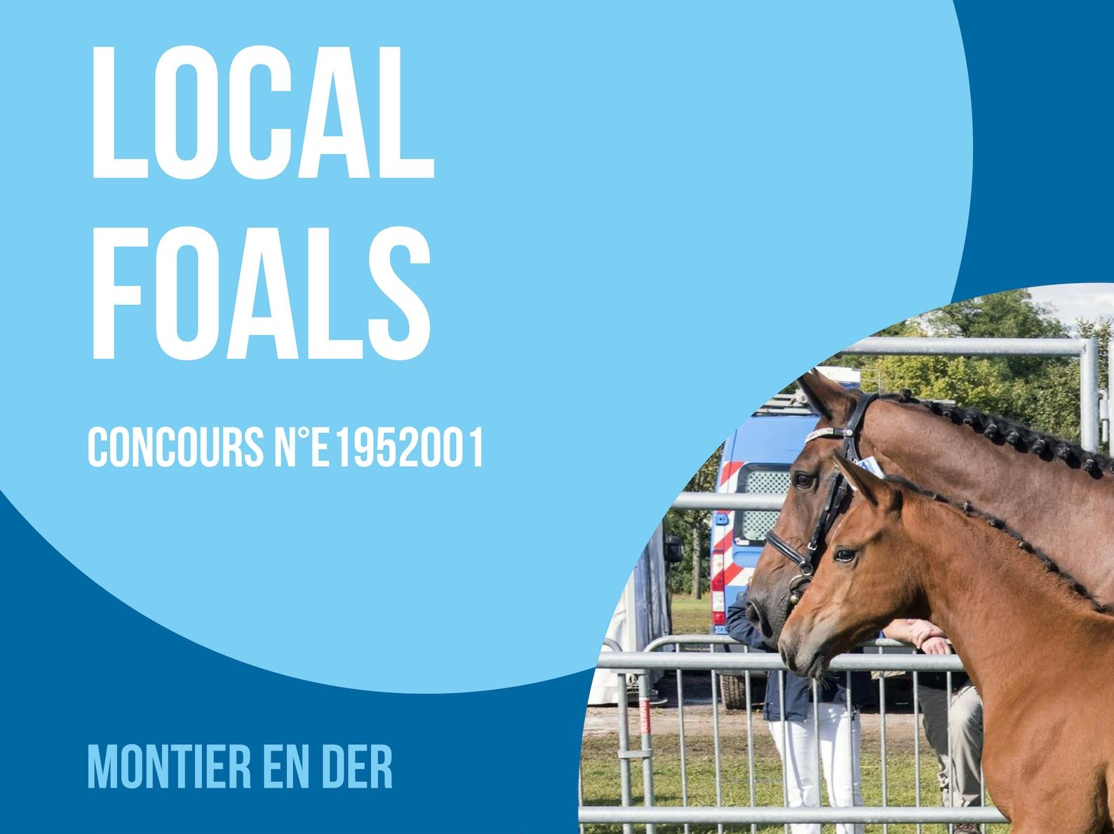 Local Foals - Montier en Der