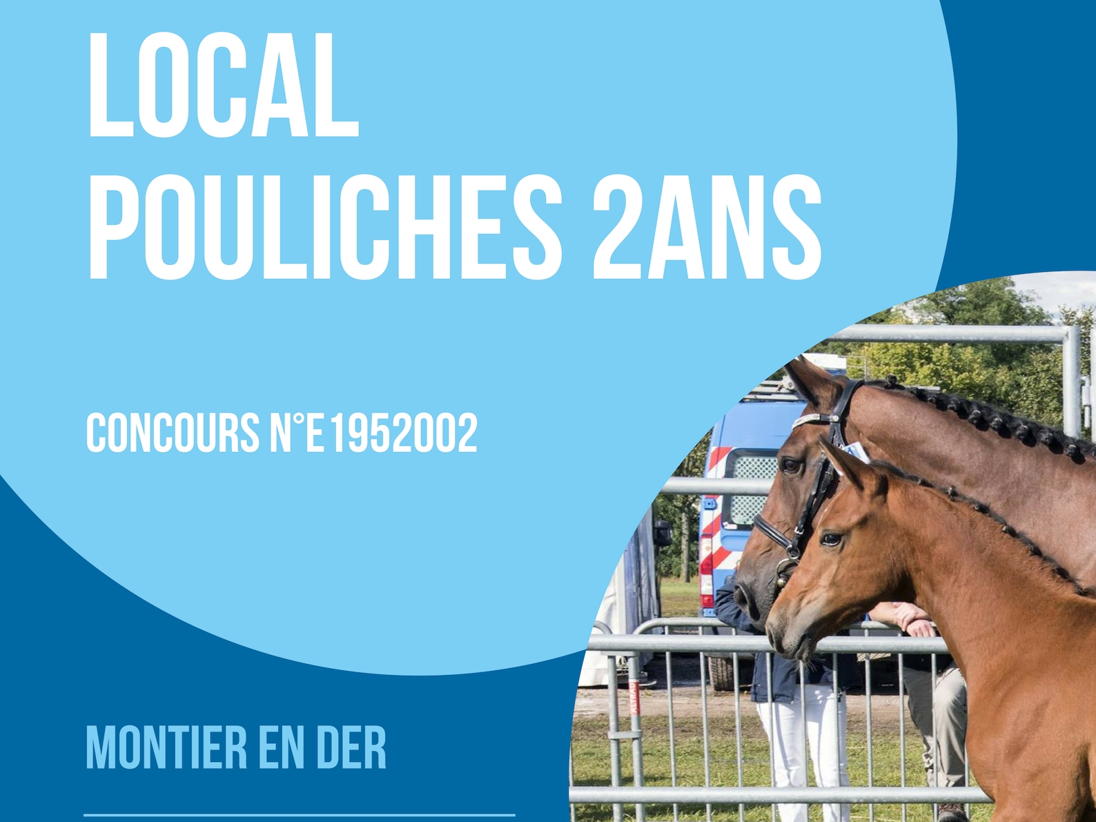 Local Pouliches 2 ans - Montier en Der