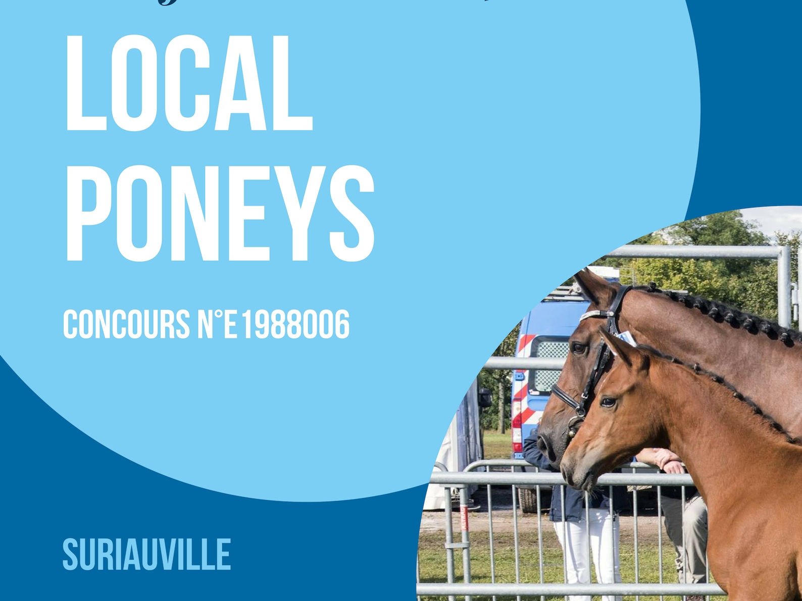 Local Poneys - Suriauville