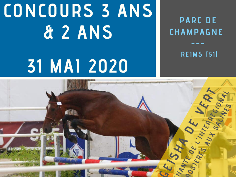 Local 2 & 3 ans - Reims (51)